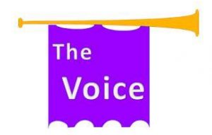The Voice...a Hit
