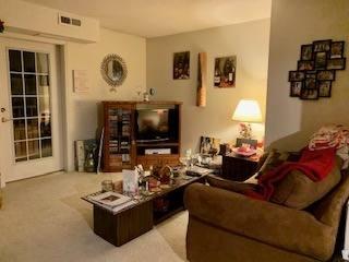 condo living room 1
