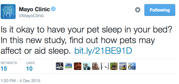 Pets and sleep tweet