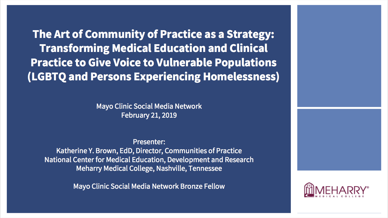Transforming Medical Education and Clinical Practice to Give Voice to Vulnerable Populations, LGBTQ  and Homeless Persons