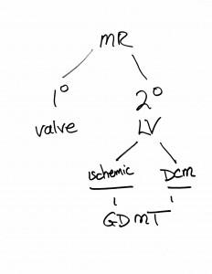 ValveDiseaseWebinarSketches-1