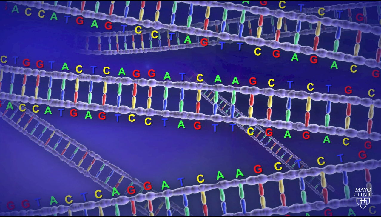 DNA pic 2