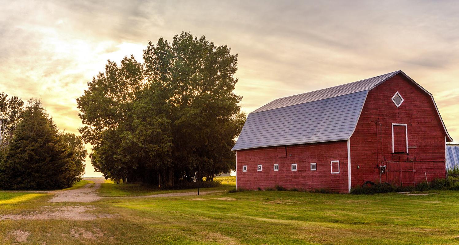 """Brunch on the Farm"" National Cancer Survivors Day - Rochester, Minnesota"