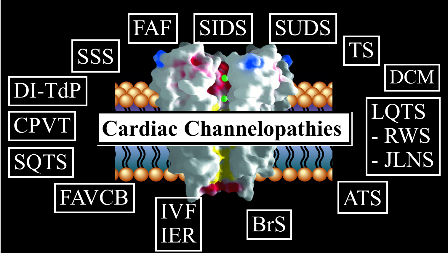 Channelopathies_1