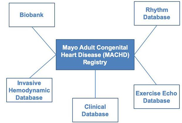 The Mayo Adult Congenital Heart Disease Biobank