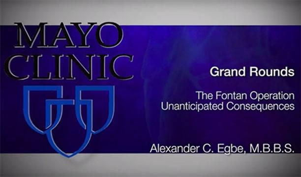 2019-11-15 CV Grand Rounds Fontan