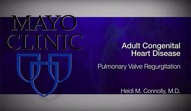 2019-01-24 Pulmonary Valve Regurgitation