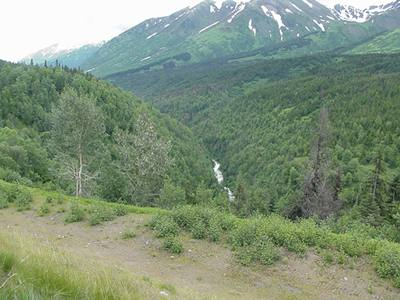 Anchorage3