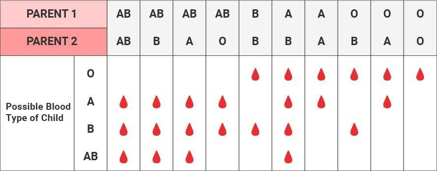 BloodType