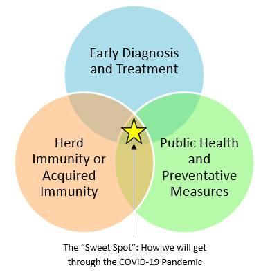 Dr Rizzo's Venn Diagram