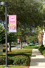 Feb. 15 marks the second time Mayo Clinic's Florida campus hosts the National Marathon to Fight Breast Cancer.