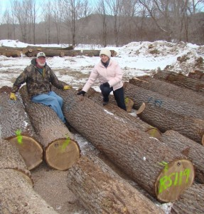 Jim and Louanne, with black walnut veneer logs cut on their farm