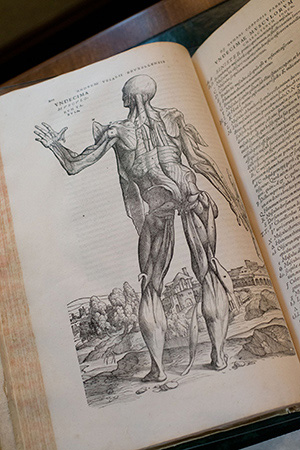 Flashback: 1938 — Gift of Classic Anatomy Book Rooted in