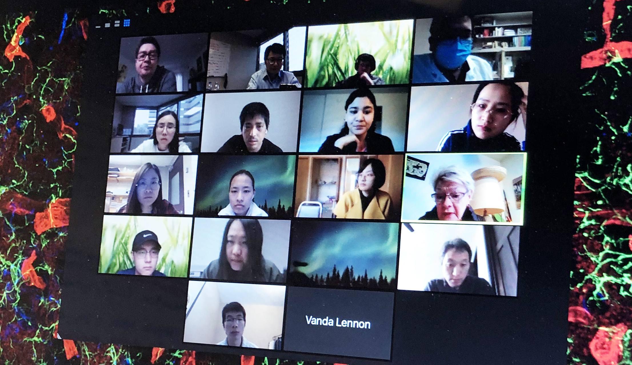 Wu lab zoom meeting Apr 28, 2020