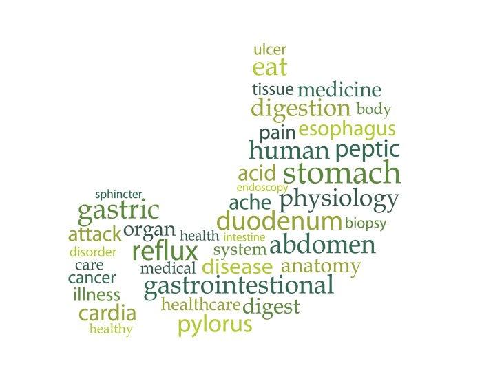 stomach word cloud