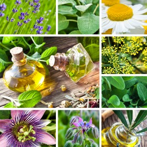 Aromatherapy Images of Herbs