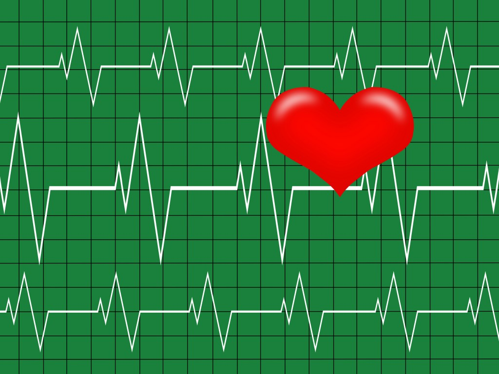 Heart illustration with heartbeat graph