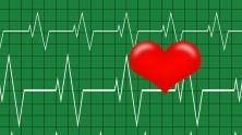 Heart Beat graph illustration
