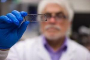 El personal del laboratorio estudia una célula de flujo en una laminilla