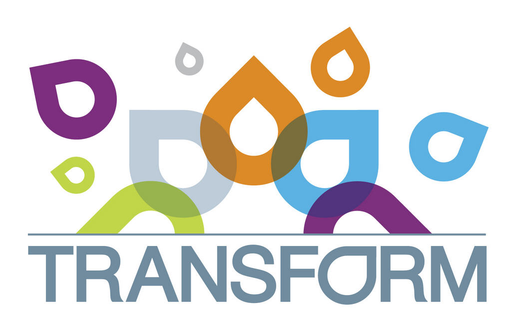 CFI Transform logo with many colors