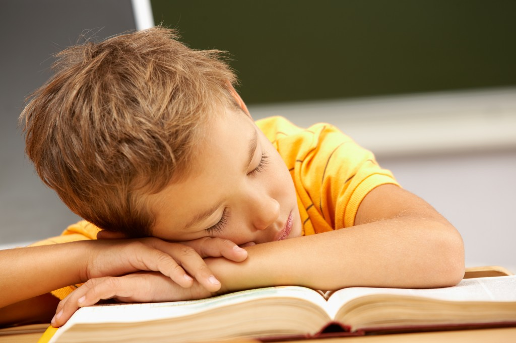 young boy sleeping on his school books