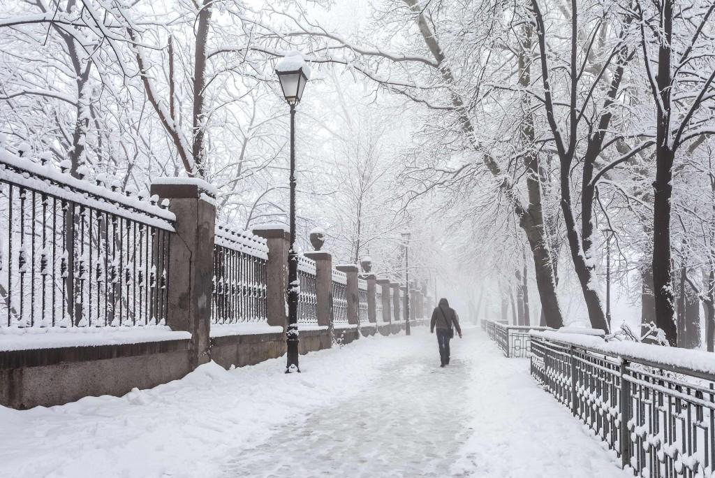snowy winter scene in city park