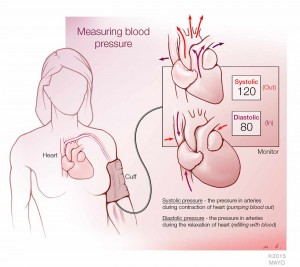 illustration describing how to measure blood pressure