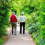 Dos personas de la tercera edad: una pareja de ancianos toma un paseo