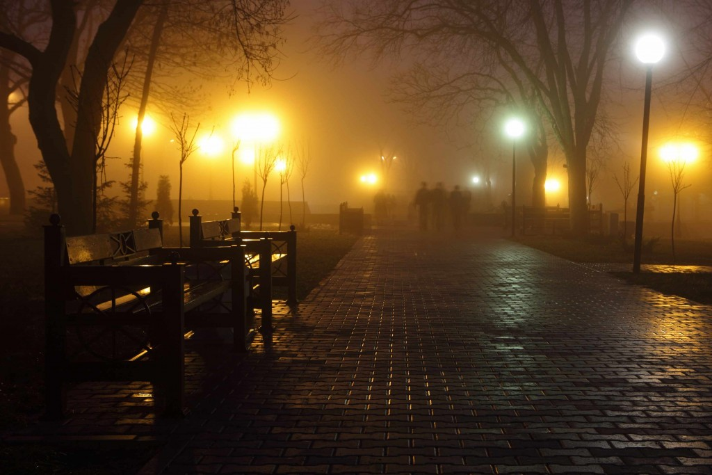 city park at night with street lights
