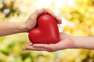 Corazón rojo en las manos