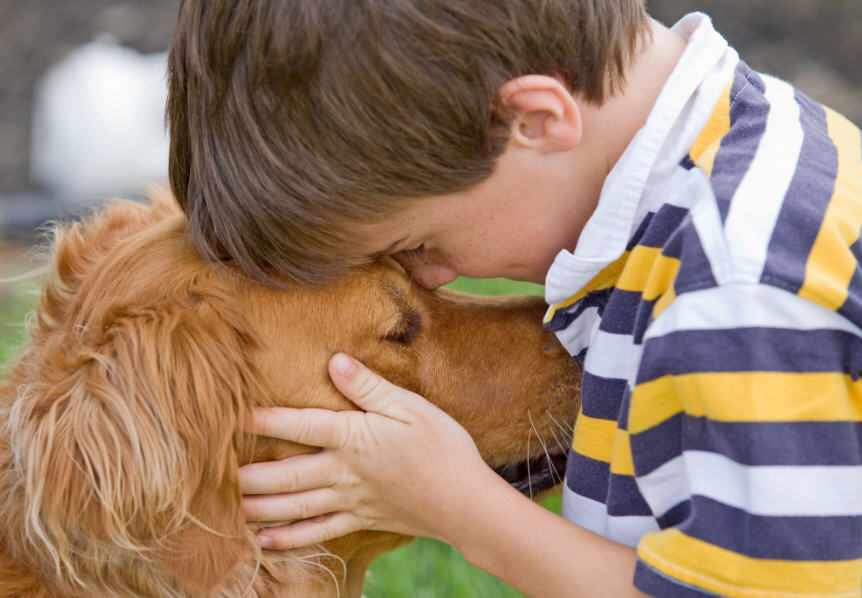 little boy petting his dog