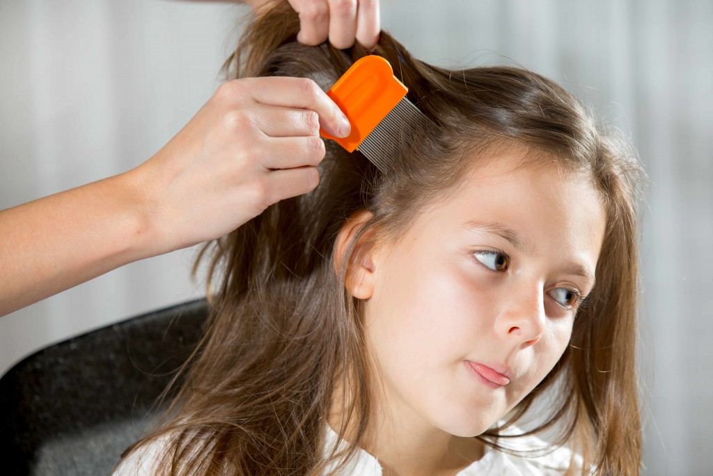 little girl getting head checked for lice