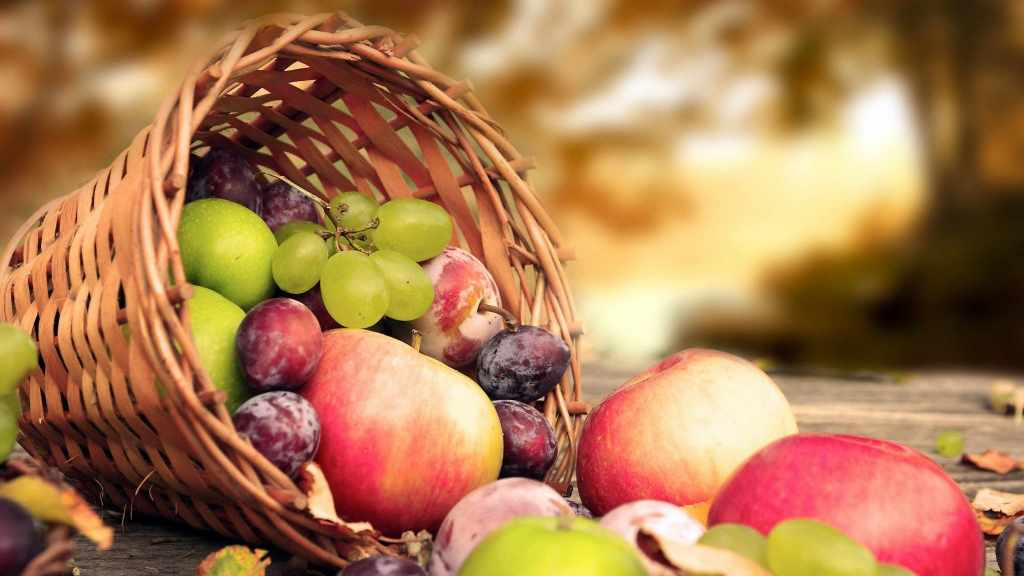 connucopia basket of mixed fruits, harvest, healthy foods