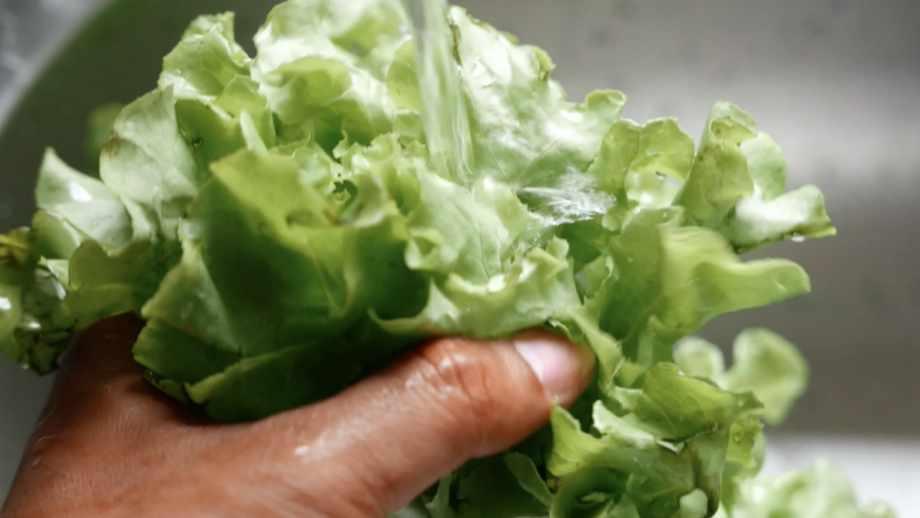 man washing lettuce