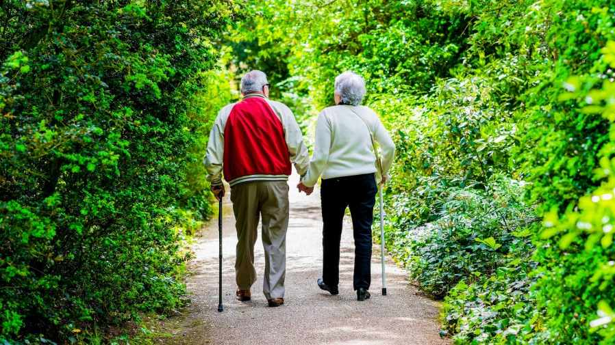 older couple waking on a path, using canes