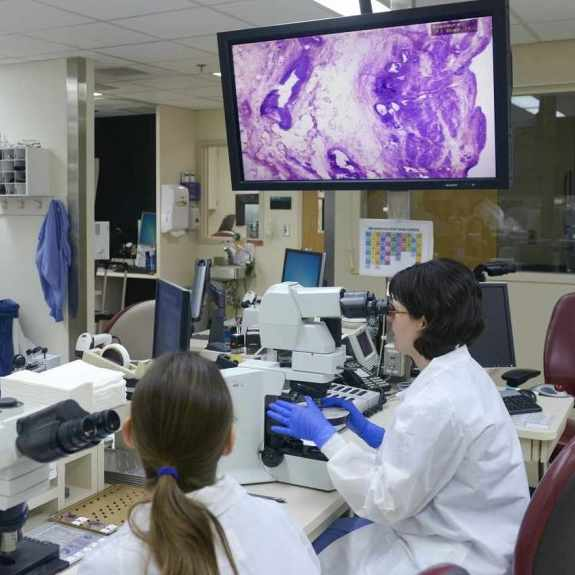 researchers looking at frozen section analysis in pathology lab