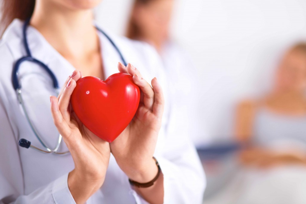 stock image of female doctor holding toy red heart