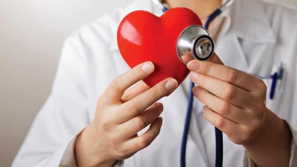 Un proveedor de atención médica con un mandil blanco y un estetoscopio sostiene un corazón de plástico rojo.