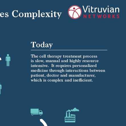 Vitruvian Infographic
