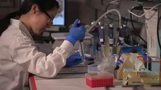 Un científico trabaja con tubos de ensayo en un laboratorio