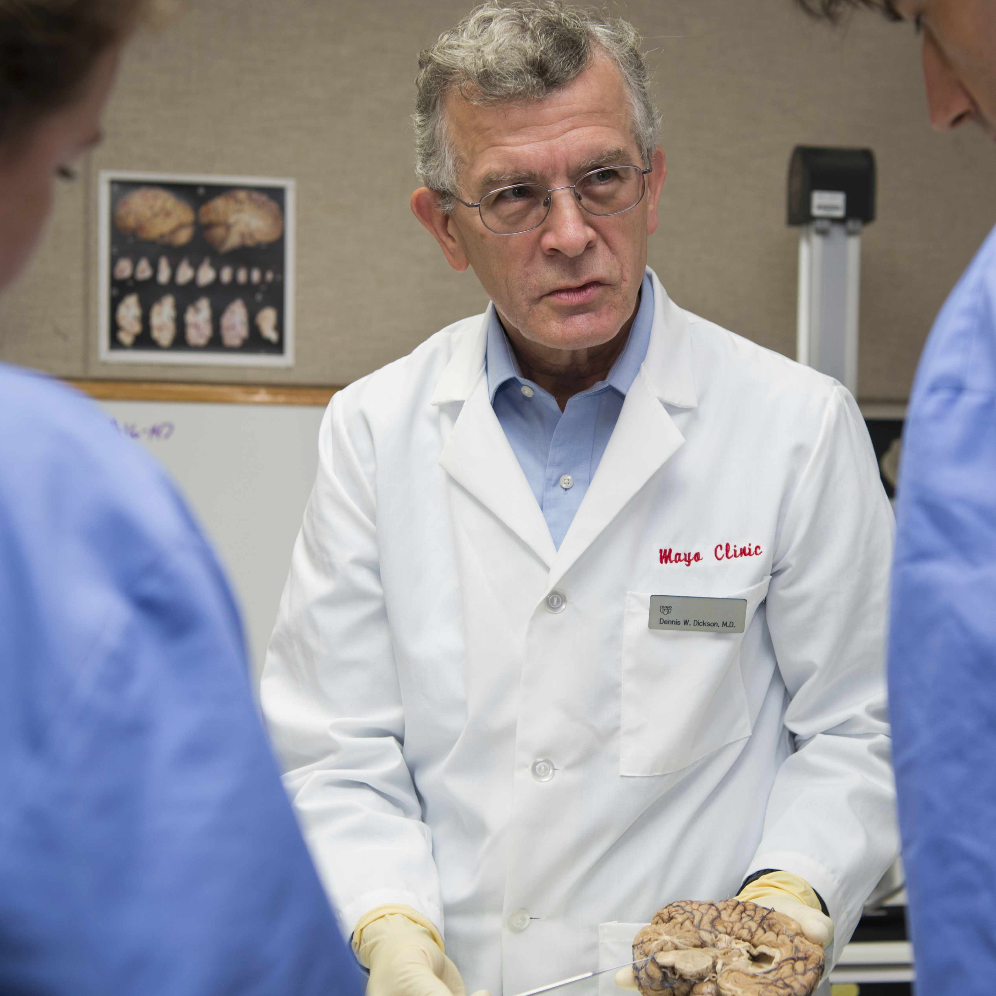 Dr. Dickson holding a dissected brain