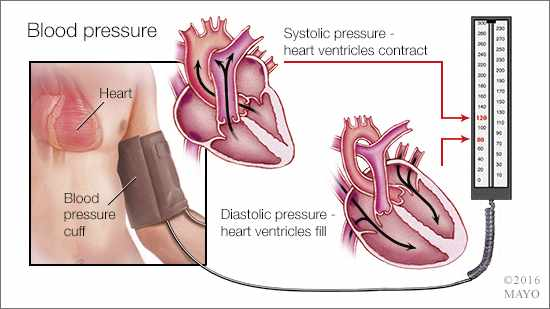 a medical illustration of the mechanism and measurement of blood pressure