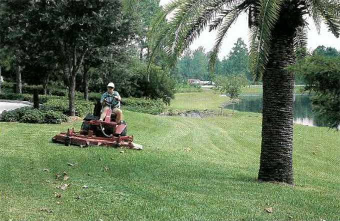 a 1991 photo of head groundskeeper Rickie Firestine mowing at the Mayo Clinic campus in Jacksonville, Florida