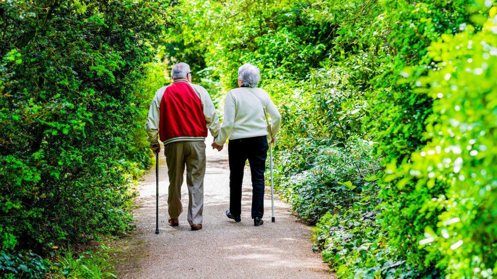 Una pareja de dos ancianos camina por una senda