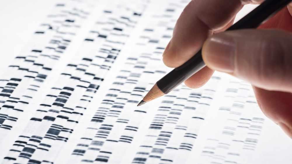 Unos científicos examinan el gel de ADN que se usa en genética, medicina, biología, investigación farmacológica y ciencia forense.