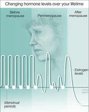 a medical illustration of a woman's changing homones through perimonopause and menopause
