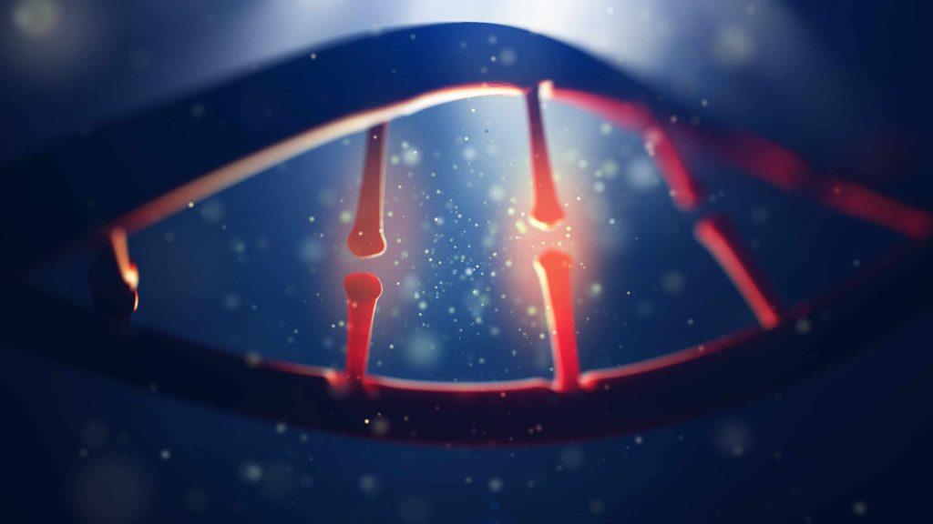 Imagen del genoma human