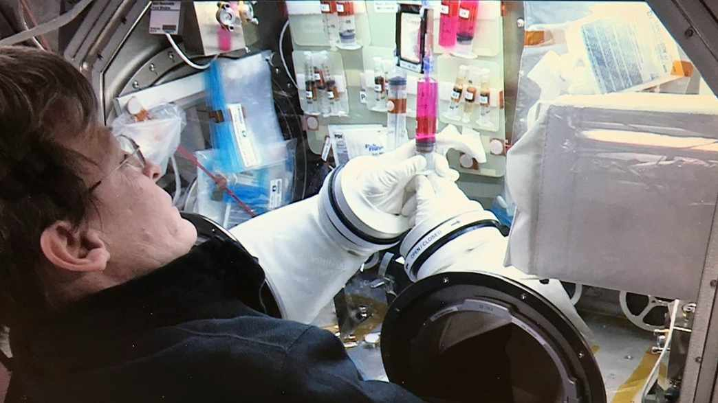 NASA astronaut working on Dr. Zubair's stem cell research on space station