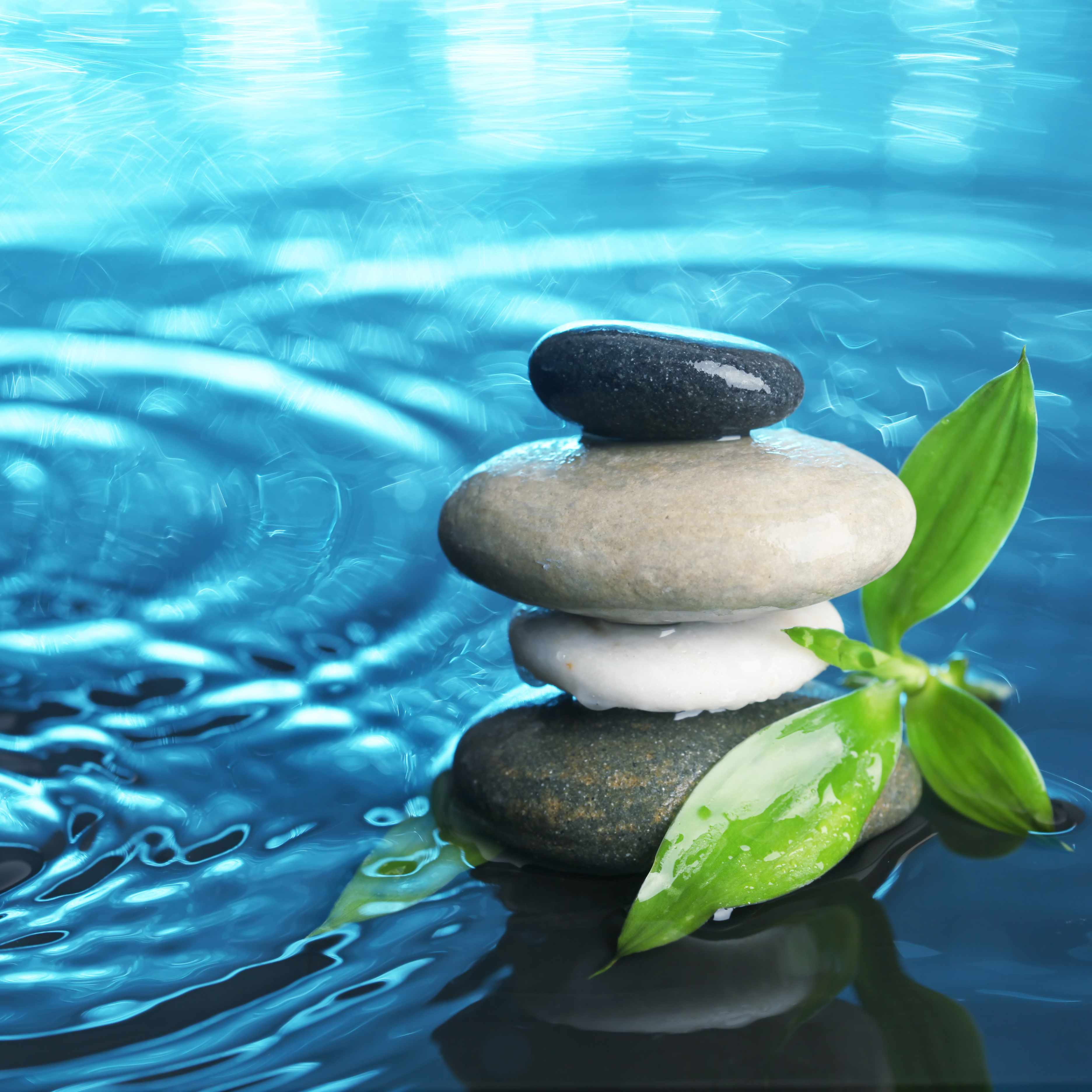 a stack of smooth, flat stones and a sprig of bamboo in a shallow pool of water with ripples on the surface