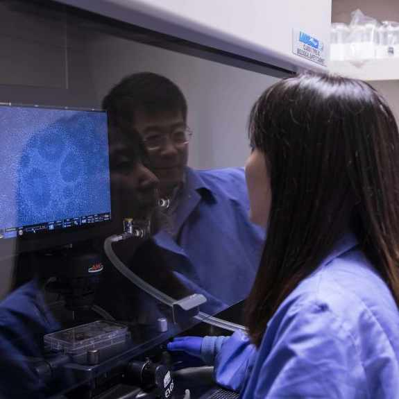 Dr. Bu and one of his associates reviews stem cells in the new neurodegenerative lab on Florida's campus